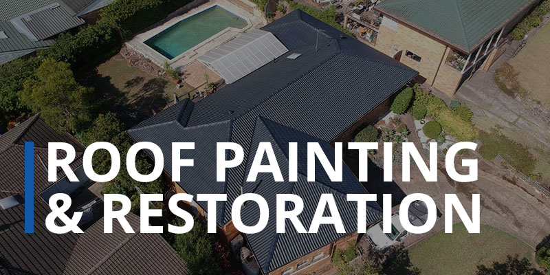 roof-painting-and-restoration